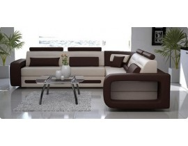 GH-1019C Sectional